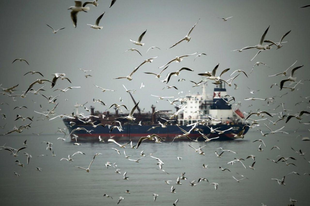 lebanon-tanker-1280x849.jpg