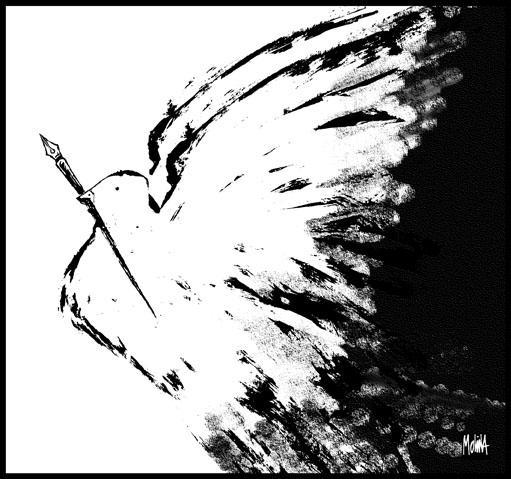 fly___pedro_x__molina.jpg