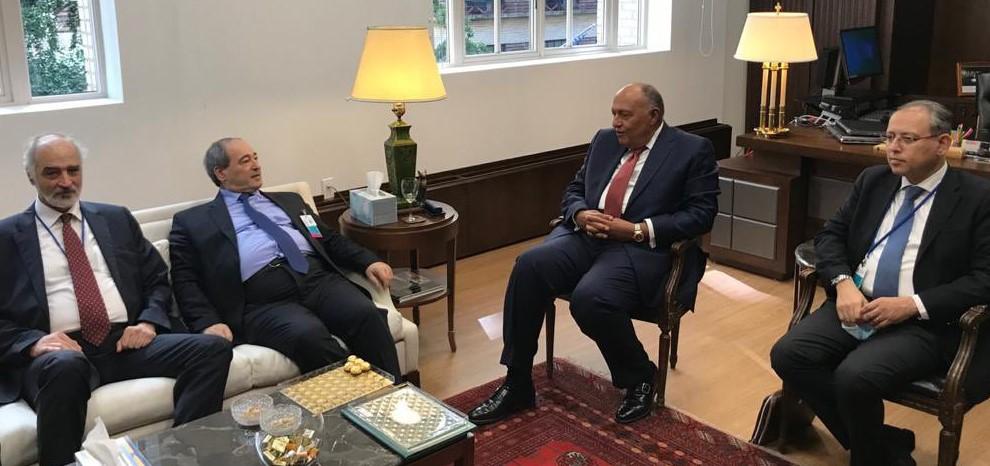-وزير-الخارجية-السوري-بنظيره-المصري.jpg